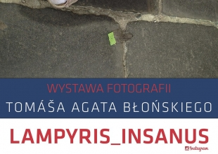 Lampyris_Insanus w BWA